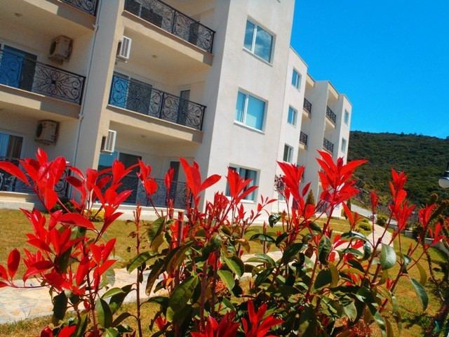 luxury Apartment units in Bodrum-Gulluk